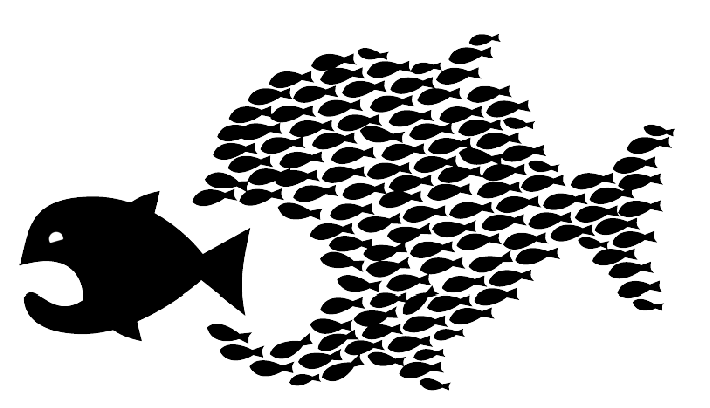 Small Fish Organise Against Big Fish